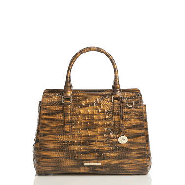 Small Finley Tiger's Eye Melbourne Front Brahmin Exclusive