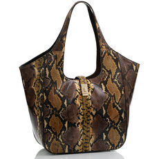 Carla Chocolate Erling Front Last Chance