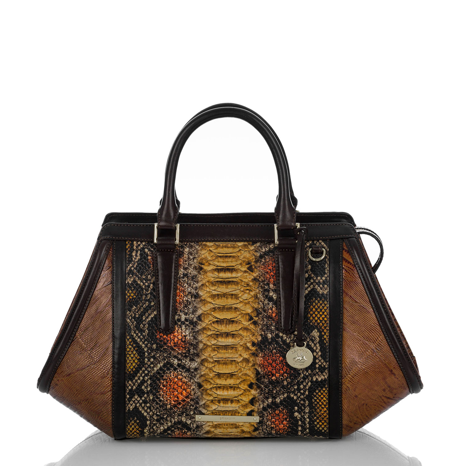 Arden Satchel Brown Tyndale Video Thumbnail